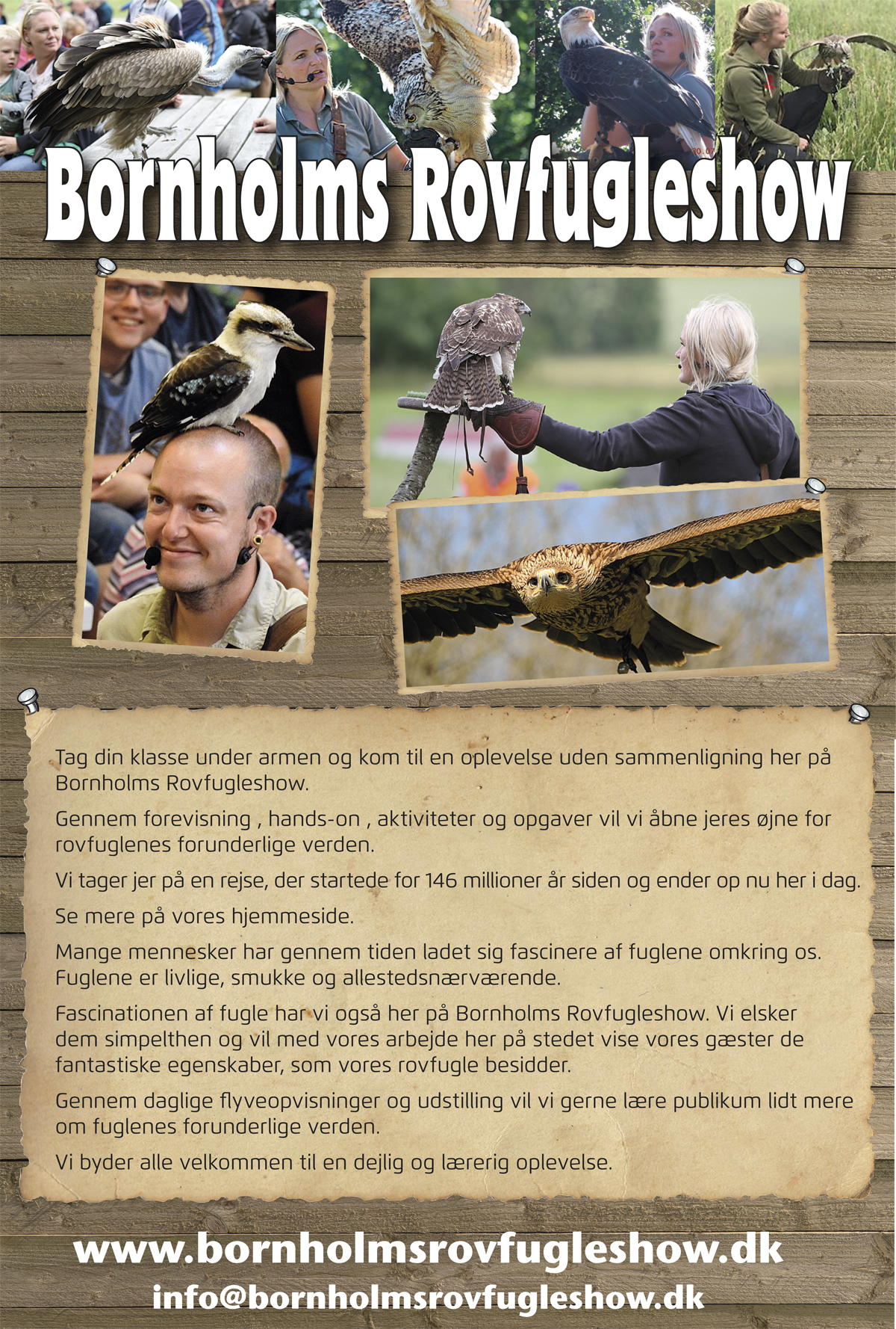 Bornholms-Rovfugleshow